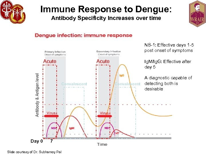 Immune Response to Dengue: Antibody Specificity Increases over time NS-1: Effective days 1 -5