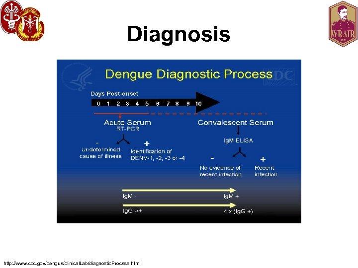 Diagnosis http: //www. cdc. gov/dengue/clinical. Lab/diagnostic. Process. html