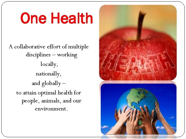 One Health A collaborative effort of multiple disciplines – working locally, nationally, and globally