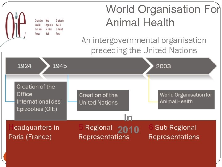 World Organisation For Animal Health An intergovernmental organisation preceding the United Nations In 2010