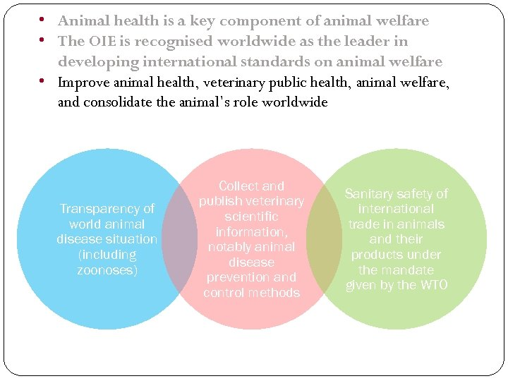 • Animal health is a key component of animal welfare • The OIE