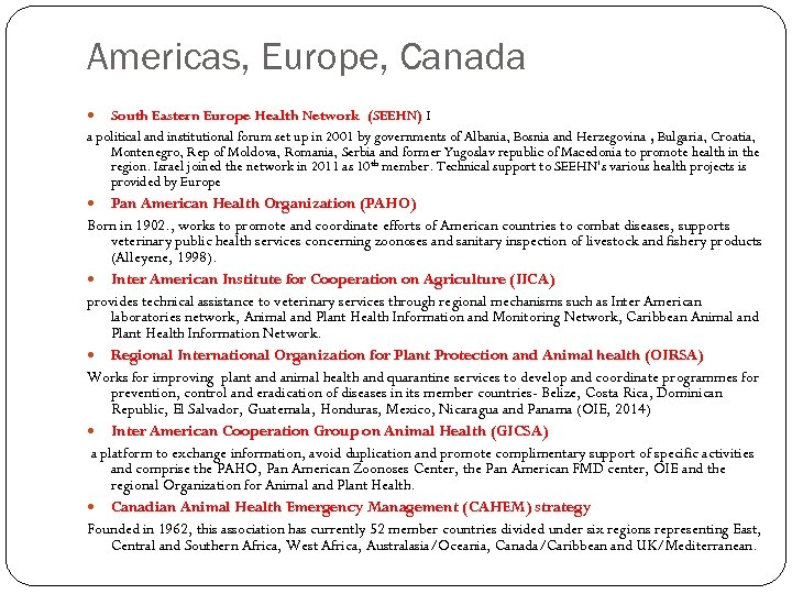 Americas, Europe, Canada South Eastern Europe Health Network (SEEHN) I a political and institutional