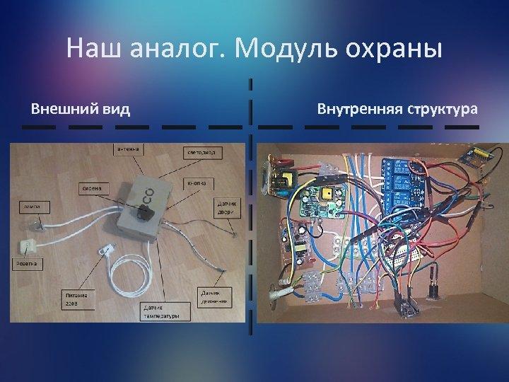 Наш аналог. Модуль охраны Внешний вид Внутренняя структура