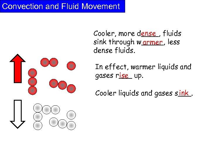 Convection and Fluid Movement Cooler, more d____, fluids ense sink through w_____, less armer