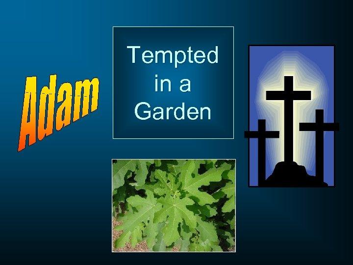 Tempted in a Garden