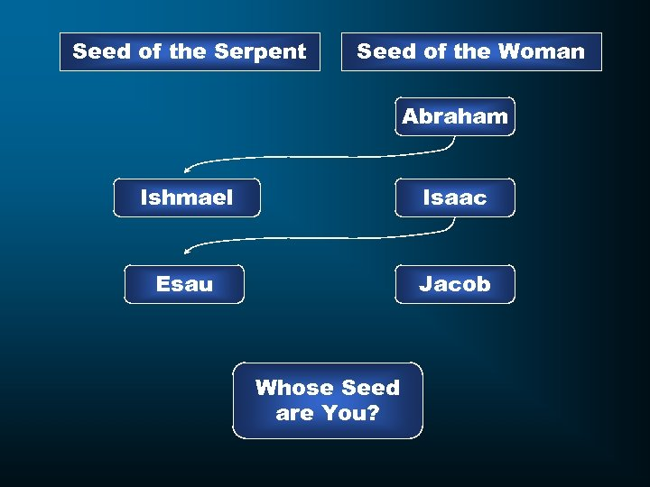 Seed of the Serpent Seed of the Woman Abraham Ishmael Isaac Esau Jacob Whose
