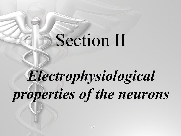 Section II Electrophysiological properties of the neurons 19