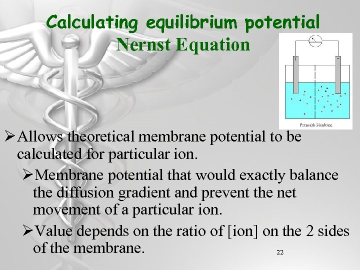 Calculating equilibrium potential Nernst Equation Ø Allows theoretical membrane potential to be calculated for