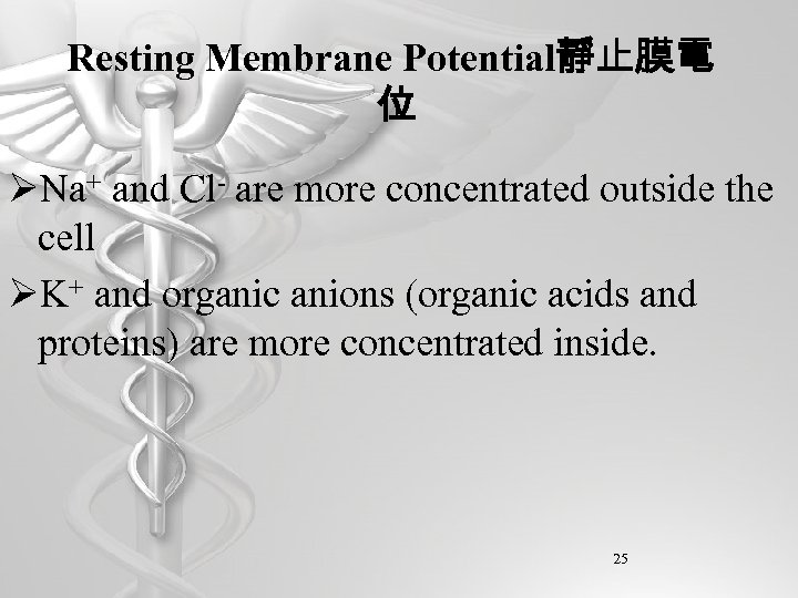 Resting Membrane Potential靜止膜電 位 ØNa+ and Cl- are more concentrated outside the cell ØK+