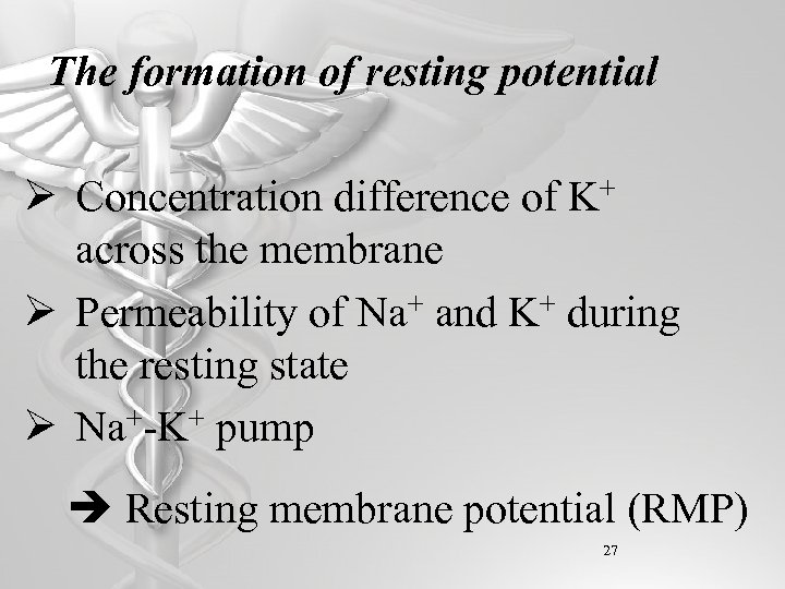 The formation of resting potential Ø Concentration difference of K+ across the membrane Ø