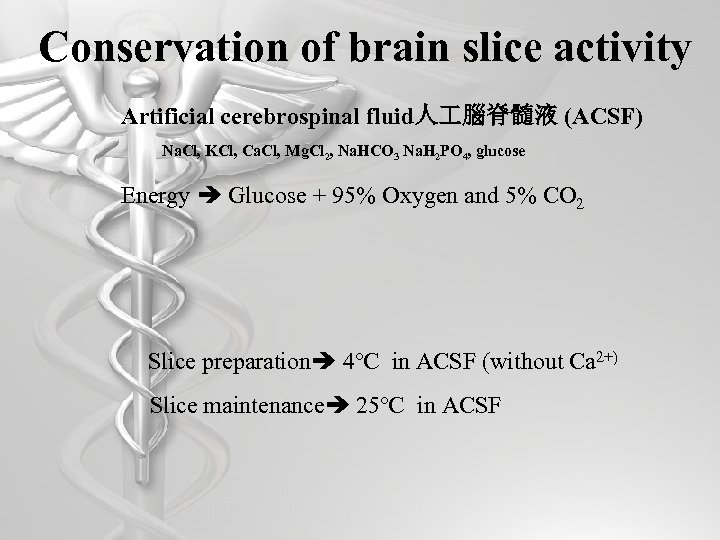 Conservation of brain slice activity Artificial cerebrospinal fluid人 腦脊髓液 (ACSF) Na. Cl, KCl, Ca.