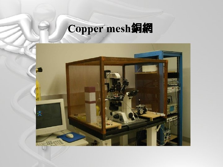 Copper mesh銅網