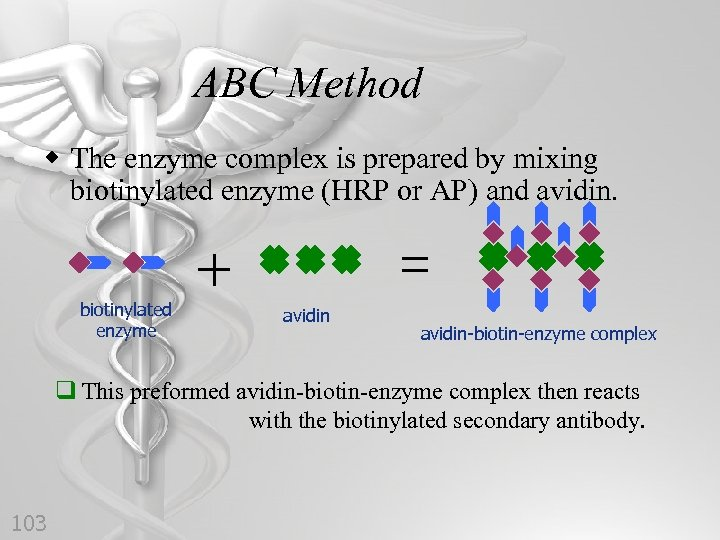 ABC Method w The enzyme complex is prepared by mixing biotinylated enzyme (HRP or