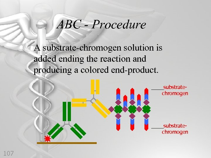 ABC - Procedure A substrate-chromogen solution is added ending the reaction and producing a