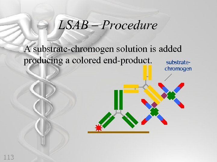 LSAB – Procedure A substrate-chromogen solution is added producing a colored end-product. substrate- chromogen