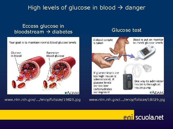 High levels of glucose in blood danger Eccess glucose in bloodstream diabetes Glucose test
