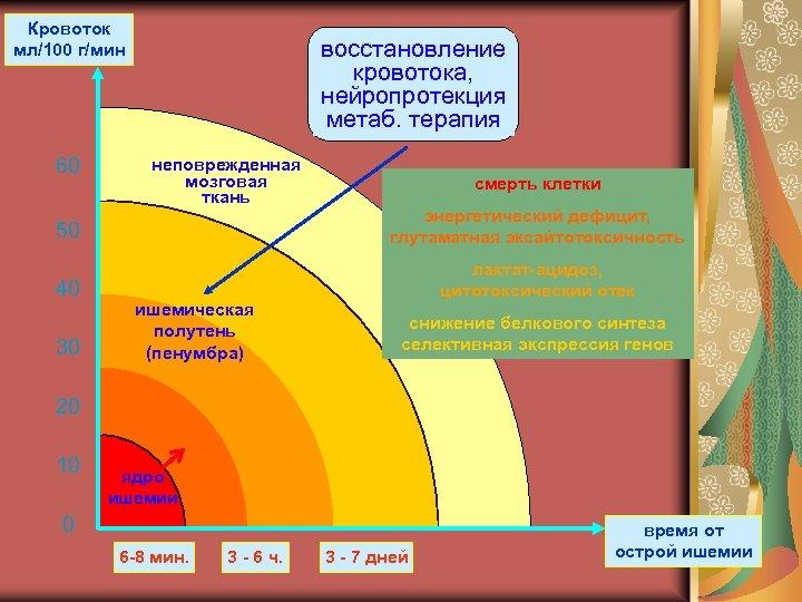 Кровоток мл/100 г/мин 60 восстановление кровотока, нейропротекция метаб. терапия неповрежденная мозговая ткань смерть клетки