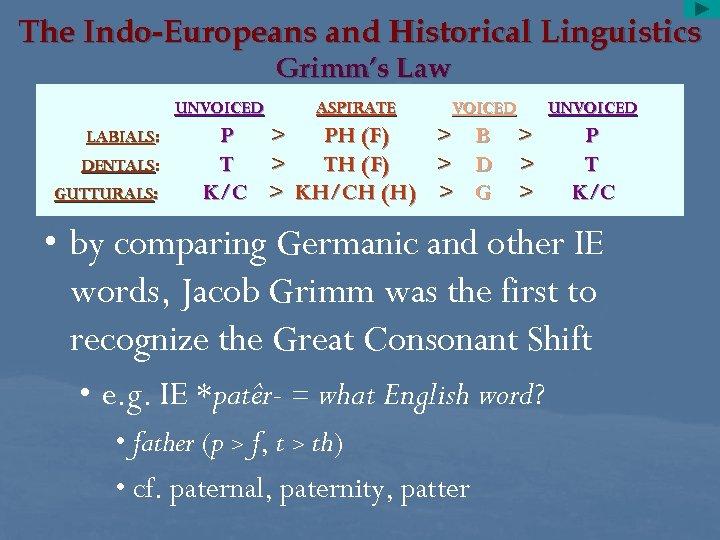 The Indo-Europeans and Historical Linguistics Grimm's Law UNVOICED LABIALS: DENTALS: GUTTURALS: P T K/C