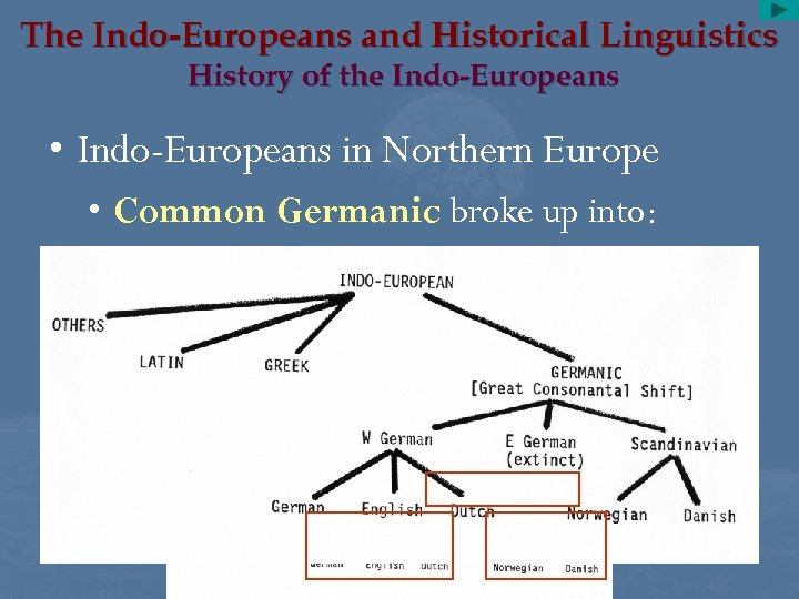 The Indo-Europeans and Historical Linguistics History of the Indo-Europeans • Indo-Europeans in Northern Europe