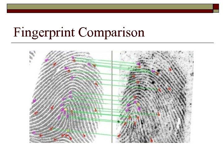Fingerprint Comparison