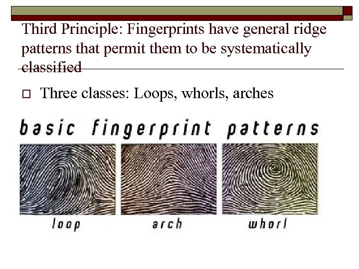 Third Principle: Fingerprints have general ridge patterns that permit them to be systematically classified