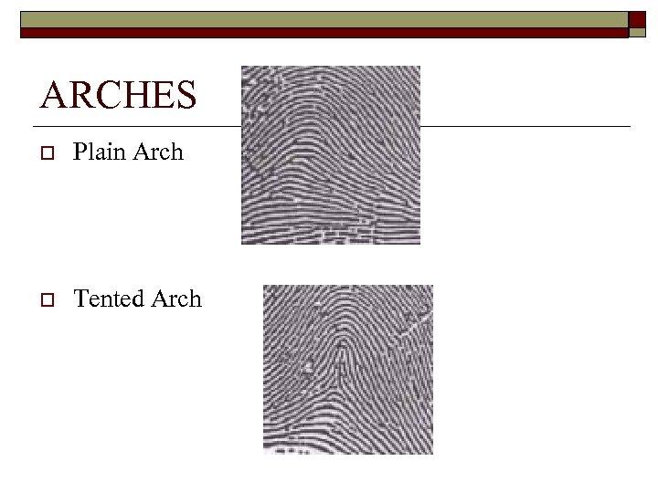ARCHES o Plain Arch o Tented Arch
