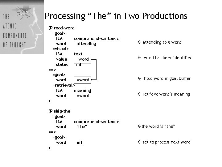 """Processing """"The"""" in Two Productions (P read-word =goal> ISA comprehend-sentence word attending =visual> ISA"""