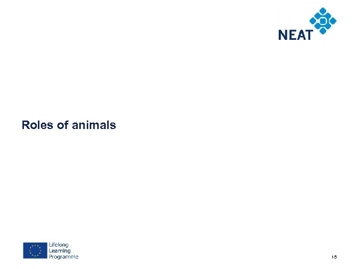 Roles of animals 15