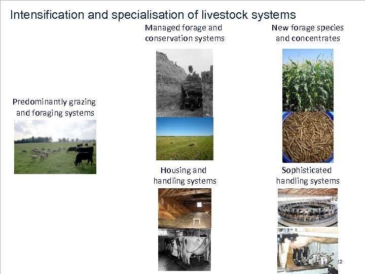 Intensification and specialisation of livestock systems Managed forage and conservation systems New forage species