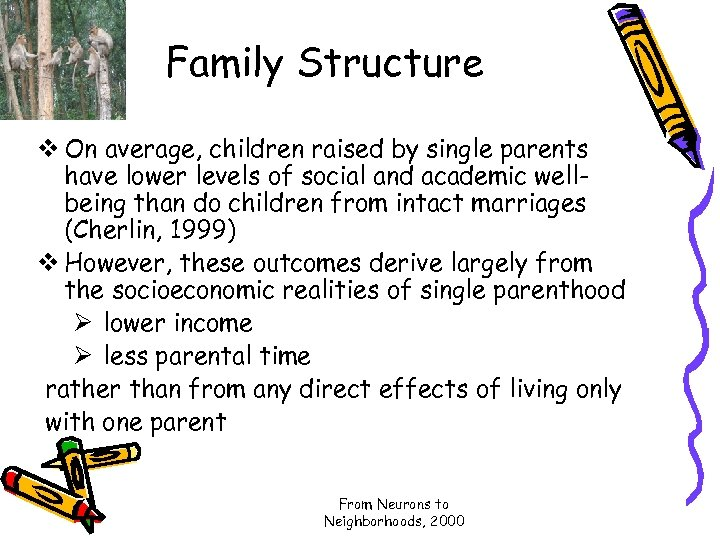 Family Structure v On average, children raised by single parents have lower levels of