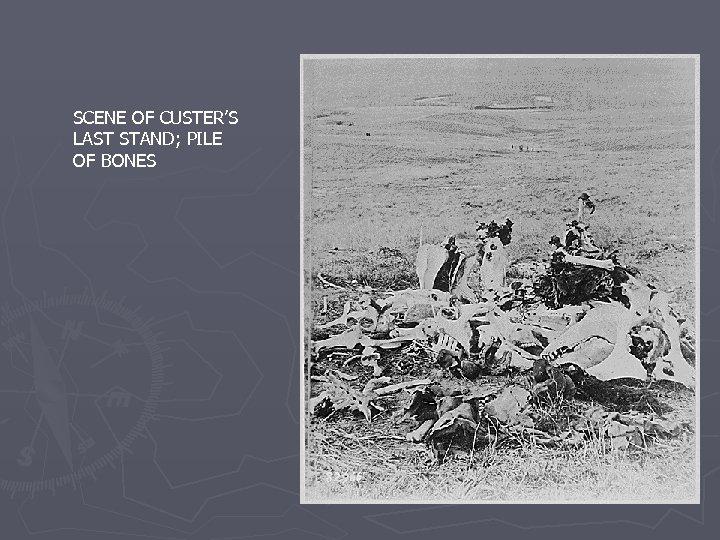 SCENE OF CUSTER'S LAST STAND; PILE OF BONES
