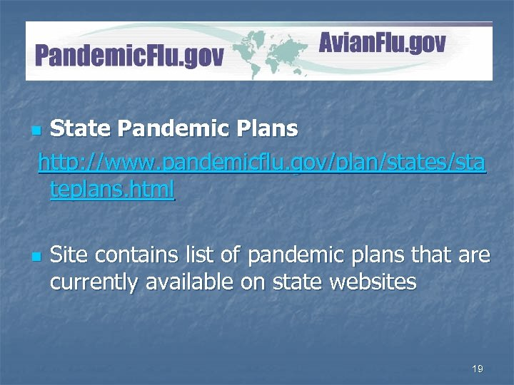 Pandemic. Flu. gov State Pandemic Plans http: //www. pandemicflu. gov/plan/states/sta teplans. html n n
