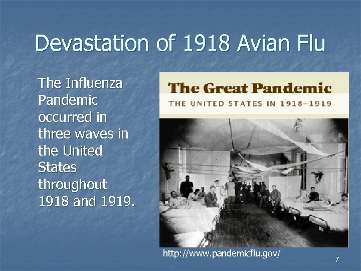 Devastation of 1918 Avian Flu The Influenza Pandemic occurred in three waves in the