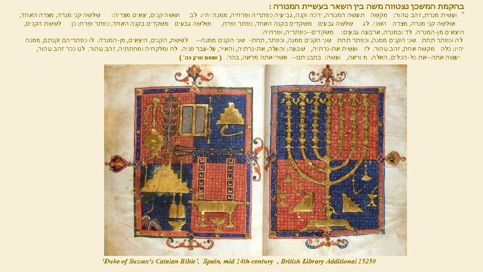 בהקמת המשכן נצטווה משה בין השאר בעשיית המנורה :