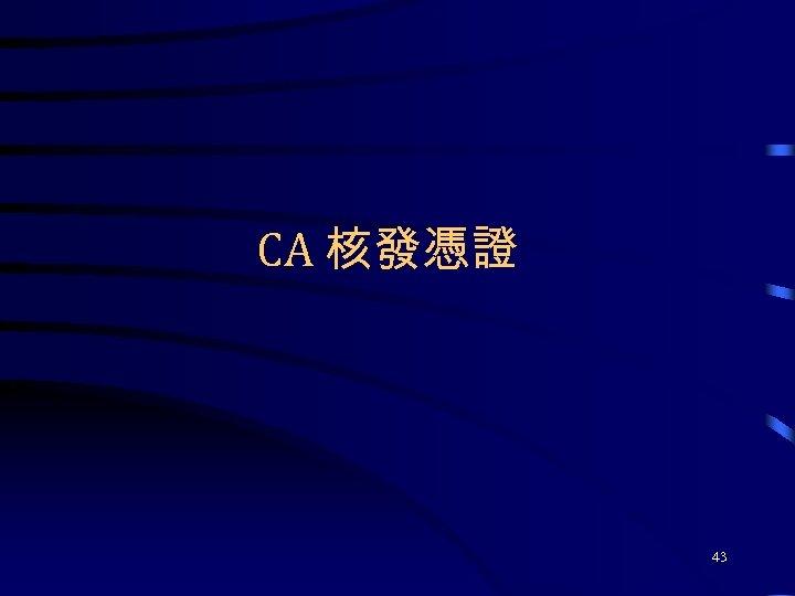 CA 核發憑證 43