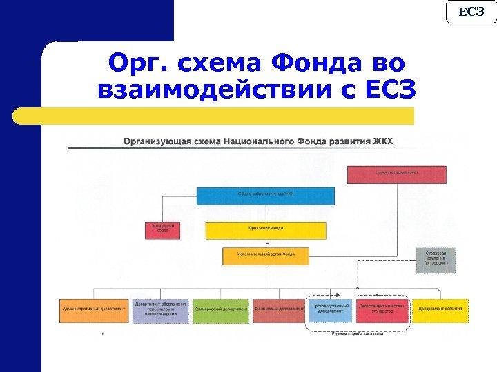 ЕСЗ Орг. схема Фонда во взаимодействии с ЕСЗ