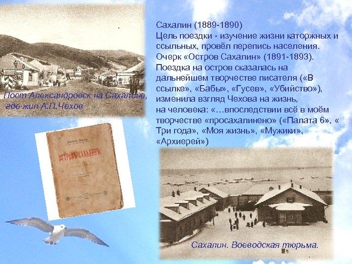 Сахалин (1889 -1890) Цель поездки - изучение жизни каторжных и ссыльных, провёл перепись населения.