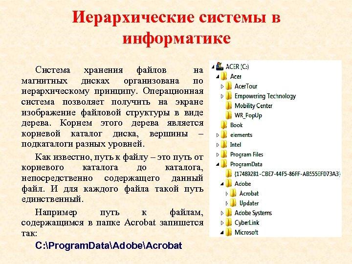 Иерархические системы в информатике Система хранения файлов на магнитных дисках организована по иерархическому принципу.