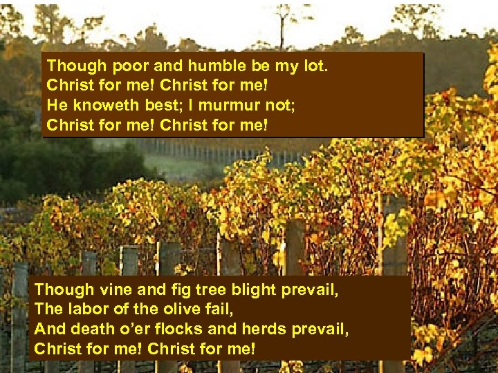 Though poor and humble be my lot. Christ for me! He knoweth best; I
