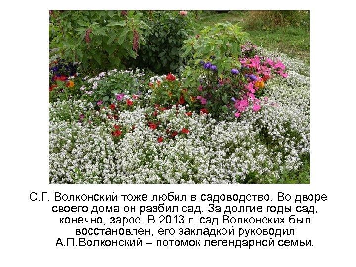 С. Г. Волконский тоже любил в садоводство. Во дворе своего дома он разбил сад.