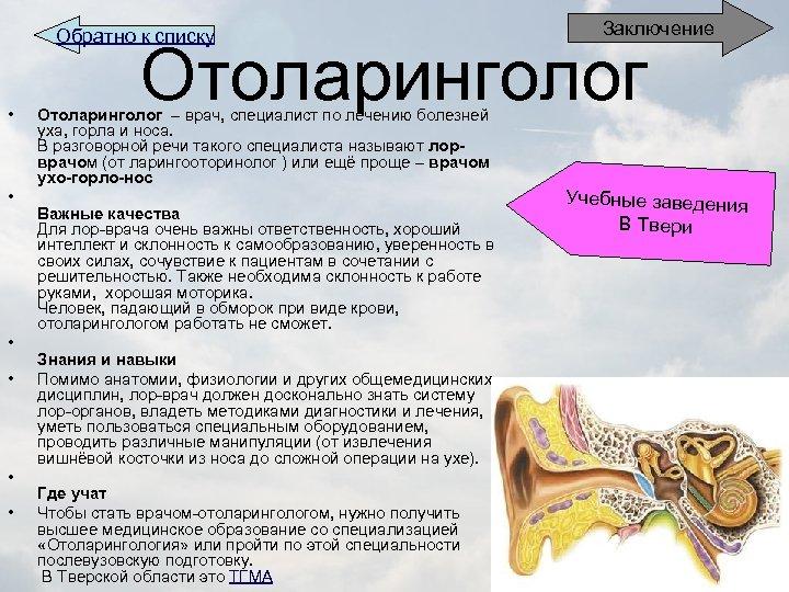 Обратно к списку • • • Заключение Отоларинголог – врач, специалист по лечению болезней