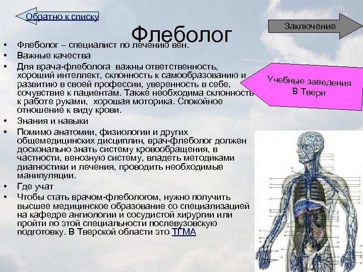 Обратно к списку • • Флеболог – специалист по лечению вен. Важные качества Для