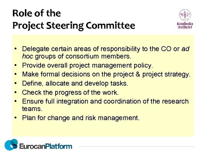 Role of the Project Steering Committee • Delegate certain areas of responsibility to the