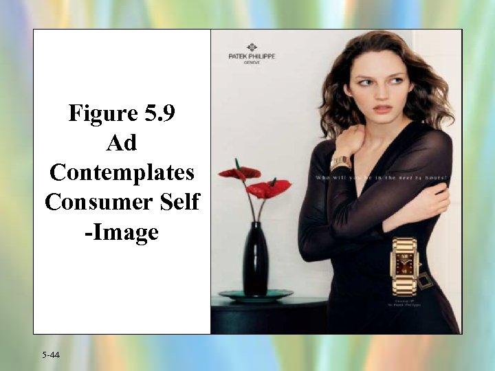 Figure 5. 9 Ad Contemplates Consumer Self -Image 5 -44