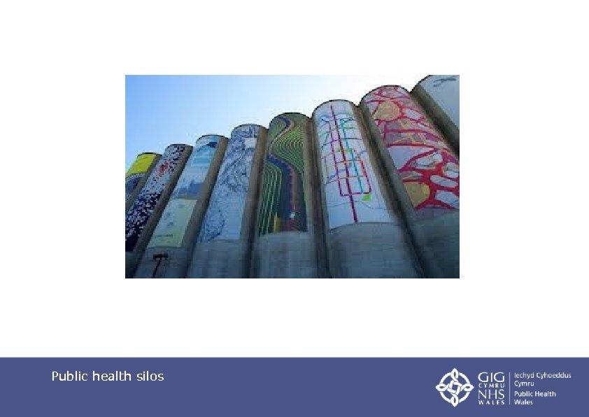Public health silos