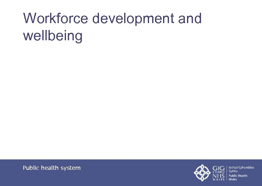 Workforce development and wellbeing Public health system