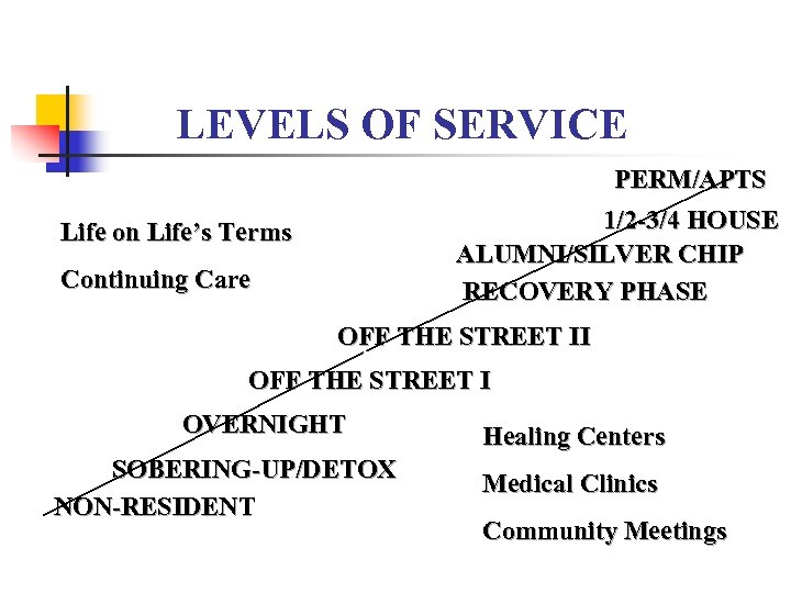 LEVELS OF SERVICE PERM/APTS 1/2 -3/4 HOUSE ALUMNI/SILVER CHIP RECOVERY PHASE Life on Life's