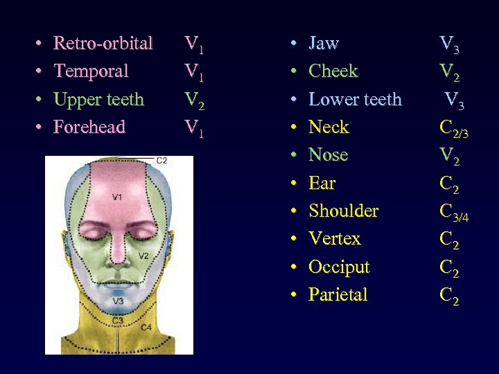 • • Retro-orbital Temporal Upper teeth Forehead V 1 V 2 V 1