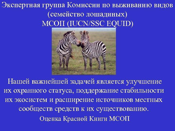 Экспертная группа Комиссии по выживанию видов (семейство лошадиных) МСОП (IUCN/SSC EQUID) Нашей важнейшей задачей