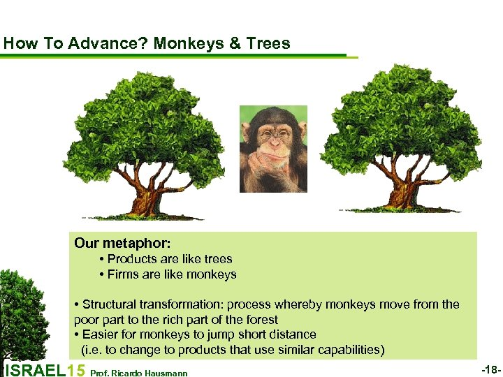 How To Advance? Monkeys & Trees Our metaphor: • Products are like trees •
